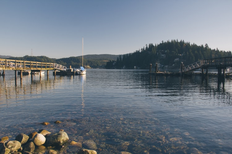 this picture shows the morning view of pleasant harbor marina